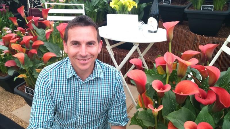 website design for brighter blooms