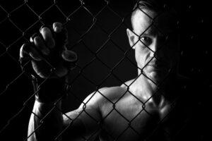 the fight store website design